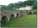 Hanging Bridge 019