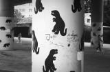 Among Dinosaurs