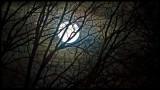 Saturday Night Moon