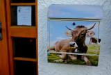 Alpine Mailbox