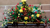 Cathedral flowers 29 December 2012
