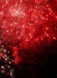 Vancouver: fireworks