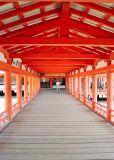 Itsukushima Shrine -  Miyashima Island