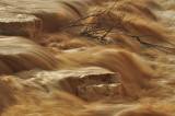 Flow streams after the rain in Beer Sheva(2