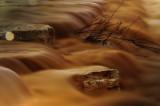 Flow streams after the rain in Beer Sheva(4)