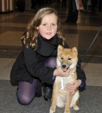 20091213-Oostende - This little girl loves my dog!!