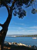 St Honorat's Island. Here we are