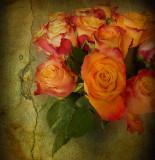 Moody roses...