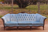 Blue Mormon Sofa