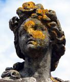 masque de lichens