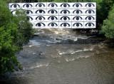 Les yeux sur la Rivière-du-loup