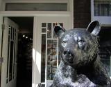 Un ours dans le vieux