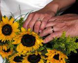 Weddings By ImageCraft