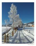 2012-12-30 09.56.51_FR_ copy.jpg