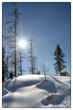 Winter 2012 / 2013