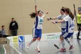 19. Januar 2013 Unihockey Leimental