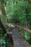 Boardwalks to the caves