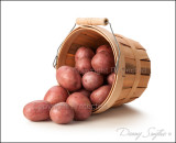 Red Potato Basket