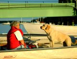 Woman & Dog Waiting For Ferry Guests