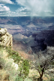 grand_canyon_1981