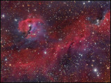 IC 2177  The Seagull nebula