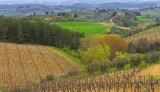 Nearby Castellina in Chianti, Tuscany
