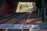 Morden Road tram tracks