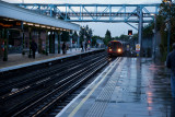 Woodford platform