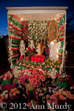 Guadalupe altar with roses and angels