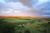African Landscape - Dec 2012