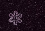 snowflake (IMG_2185p.jpg)