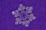snowflake (IMG_2527ok.jpg)