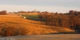 Midwestern Farms