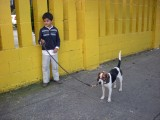 With Rahul's beagle, Bruno