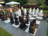 Playing chess at the Taj Exotica in Goa