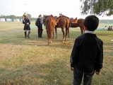 First Delhi polo match
