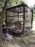 An old cage at the Delhi zoo