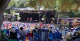 Don Curcio opens Live Oak 2012