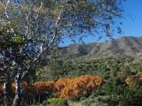 San José - view towards Jardín Botánico La Concepción