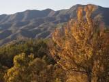 Montes de Málaga - Sendero El Boticario