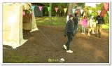 kasterlee_2011_kamp_2_220_20120419_1884300158.jpg