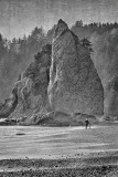 Sea stacks at Rialto Beach