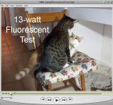 Low Light Video Test