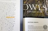 Owl Published