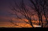 Sunrise 1-24-13