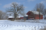 Winter crop and barn