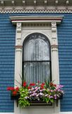 The Window Box