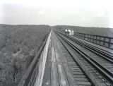 Kinzua Viaduct --Topside
