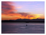 Sailboat Enjoys a Sunset Over Elliot Bay and the Olympic Mountains