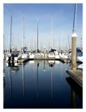 Sailboats Reflect in Still Waters